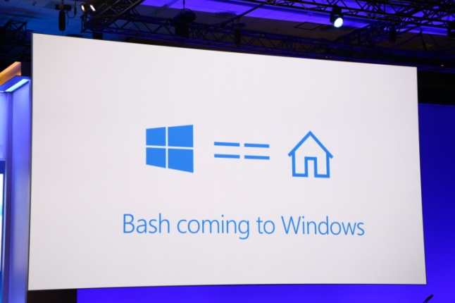 bash-linux-windows